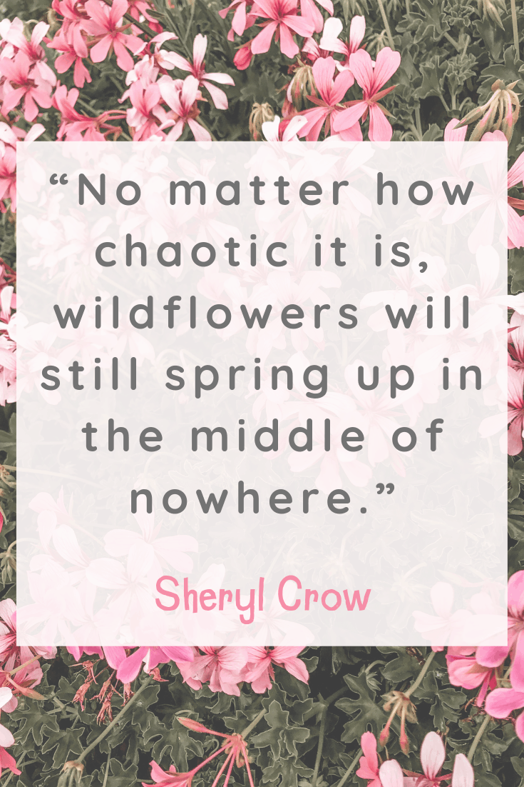 Sheryl Crow Happiness Quote