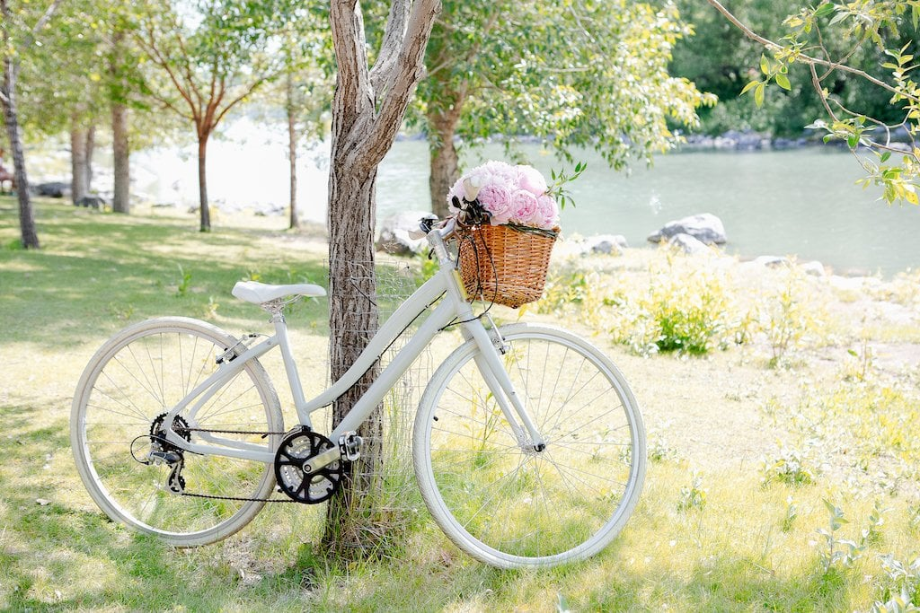 Practice mindfulness by being in nature. Pink peonies in a basket on white bike.