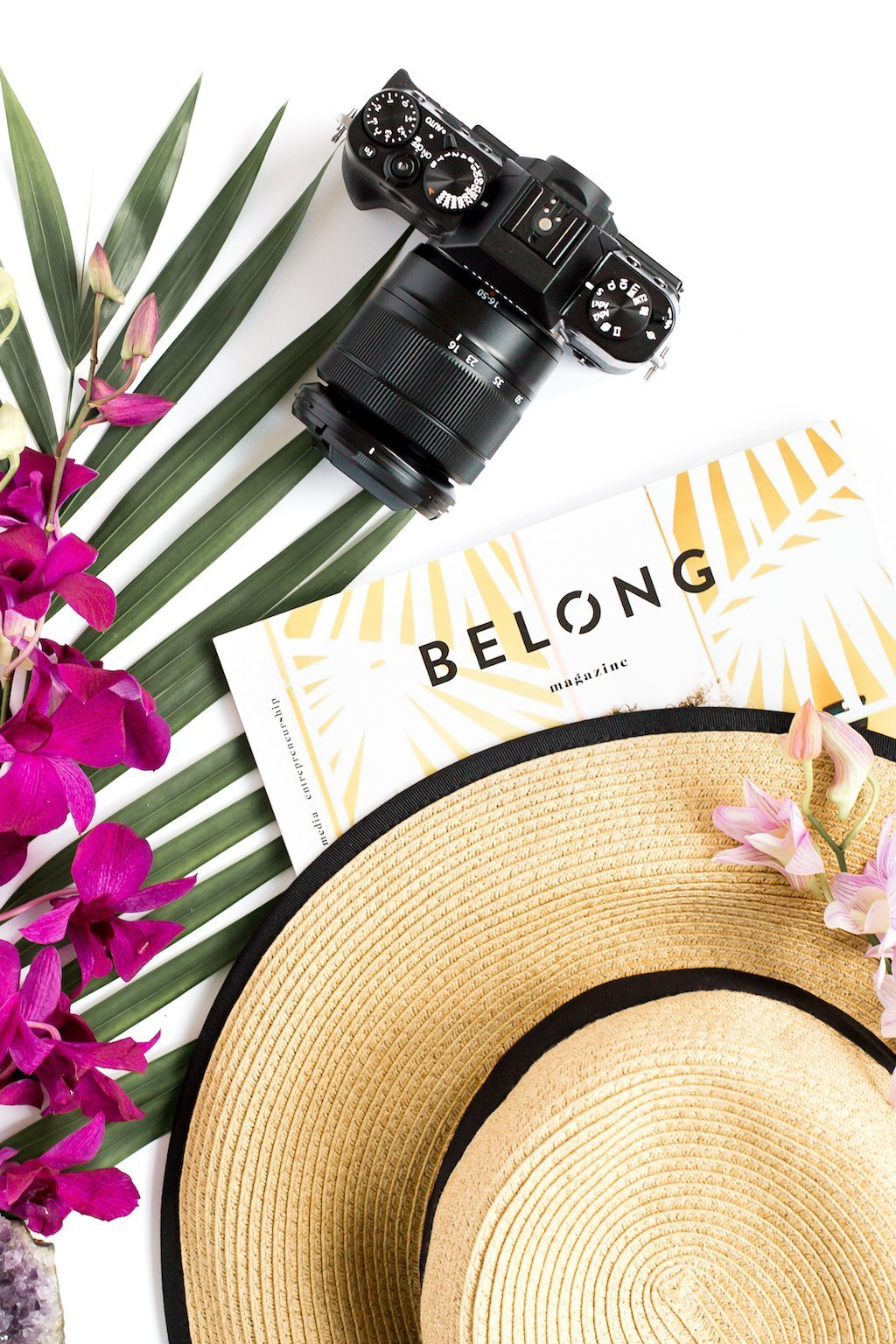 Green palm branches, tropical flowers, hat, magazine and camera.