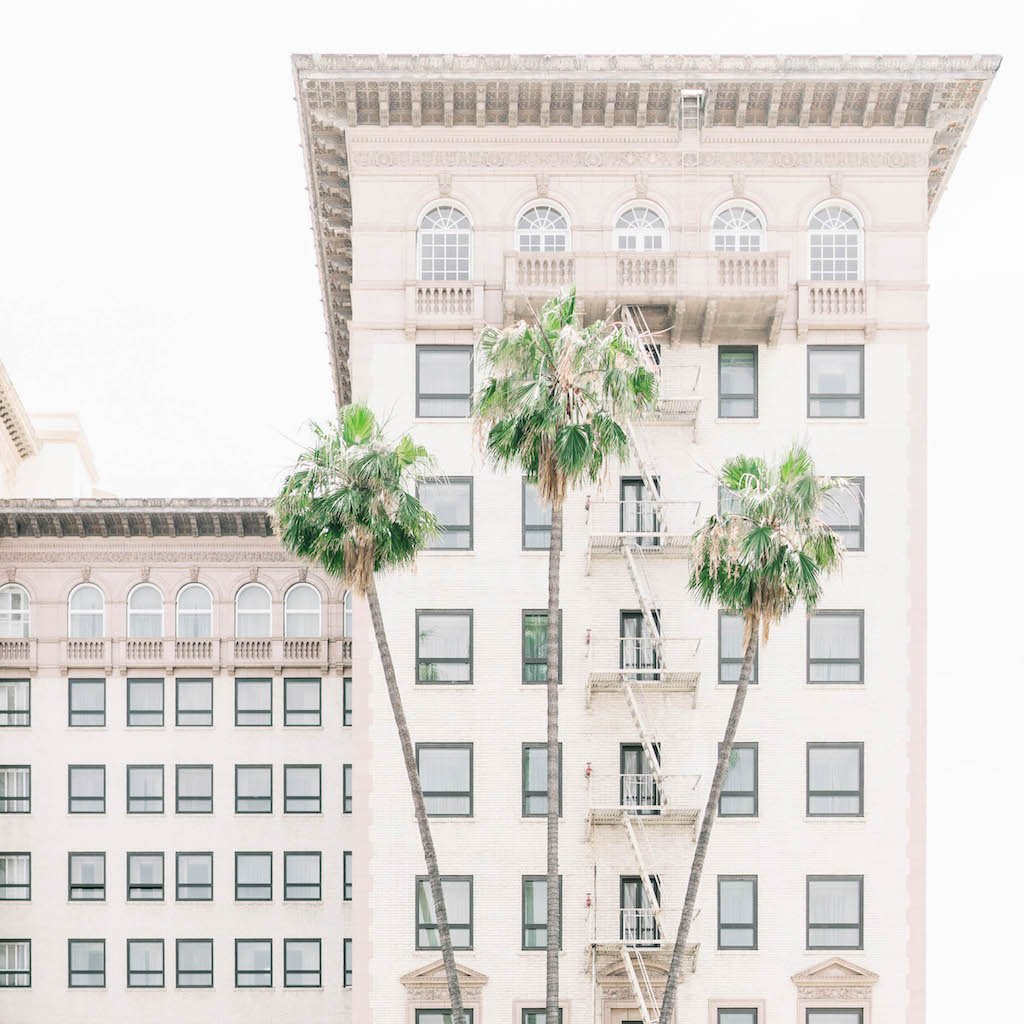 Pretty palms and pretty buildings.
