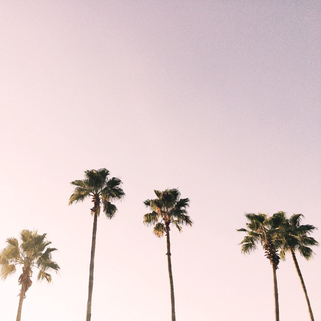 california evening sky - self-soothing views